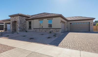 La Sentiero Single Family Home For Sale: 22361 E Sentiero Drive