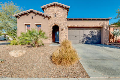Pinal County Single Family Home For Sale: 1744 E Laddoos Avenue