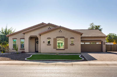 Goodyear Single Family Home For Sale: 17963 W Sells Drive