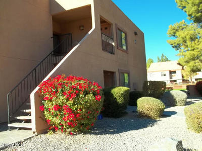 Tempe  Apartment For Sale: 330 S Beck Avenue #211