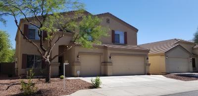 Sun City Single Family Home For Sale: 11761 W Electra Lane