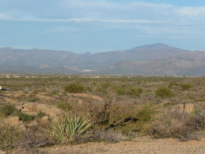 Scottsdale Residential Lots & Land For Sale: 24550 N 128th Street
