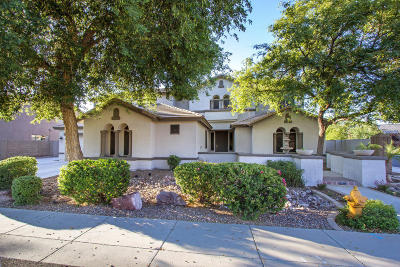 Chandler Single Family Home For Sale: 2206 E Libra Place