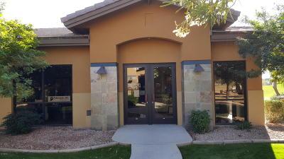 Mesa Commercial For Sale: 6640 E Baseline Road #102