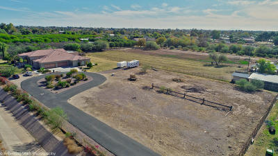 Mesa Residential Lots & Land For Sale: 833 E Narnia Circle