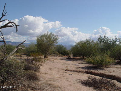 Scottsdale Residential Lots & Land For Sale: 16300 E Lowden Road