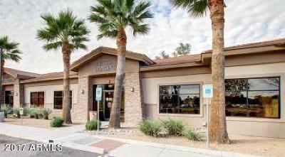 Mesa Commercial For Sale: 1345 E McKellips Road #102
