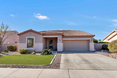Maricopa County, Pinal County Single Family Home For Sale: 5090 S Ranger Trail