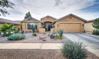 Casa Grande Single Family Home For Sale: 2651 E Golden Trail