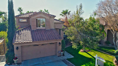 Chandler, Gilbert, Scottsdale, Tempe Single Family Home For Sale: 3880 S Heath Way