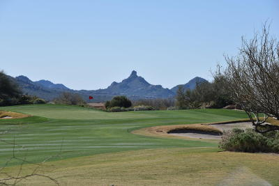 Scottsdale Residential Lots & Land For Sale: 10281 E Aniko Drive