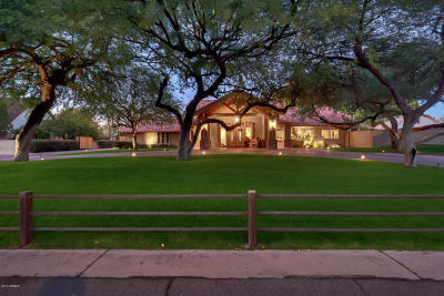 Tempe Single Family Home For Sale: 944 E La Vieve Lane