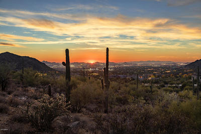 Scottsdale Residential Lots & Land For Sale: 20958 N 112th Street