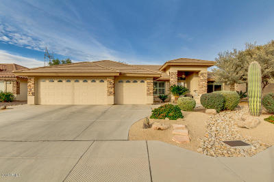 Mesa Single Family Home For Sale: 2730 S Willow Wood Avenue