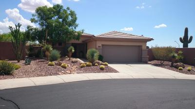 Anthem Single Family Home For Sale: 2383 W Turtle Hill Court