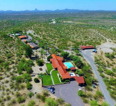 Wickenburg Single Family Home For Sale: 56550 Rancho Castias Road