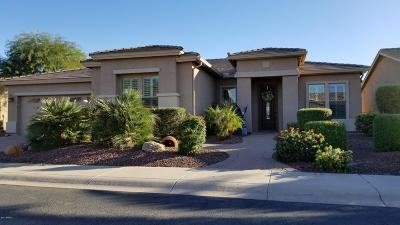 Maricopa Single Family Home For Sale: 42429 W Jailhouse Rock Court