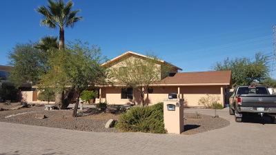 Glendale Single Family Home For Sale: 4420 W Saguaro Park Lane