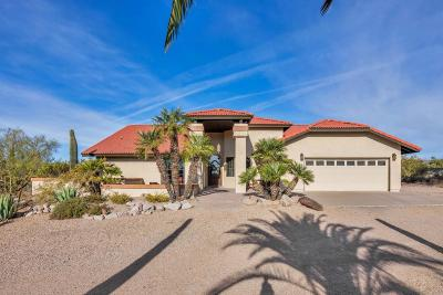 Cave Creek Single Family Home For Sale: 40816 N Fleming Springs Road
