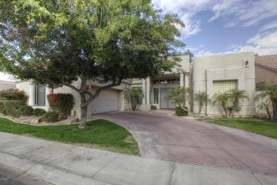 Scottsdale Single Family Home For Sale: 8244 E Jenan Drive