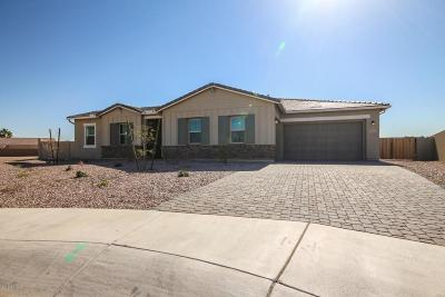 Litchfield Park Single Family Home For Sale: 5191 N Ginning Drive