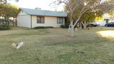 Maricopa Single Family Home For Sale: 50151 W Papago Road