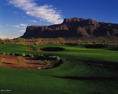 Superstition Mountain Residential Lots & Land For Sale: 9333 E Canyon View Trail