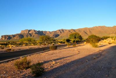 Superstition Mountain Residential Lots & Land For Sale: 9171 E Canyon View Trail