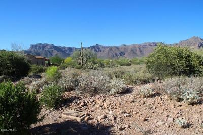 Superstition Mountain Residential Lots & Land For Sale: 8668 E Quartz Mountain Drive