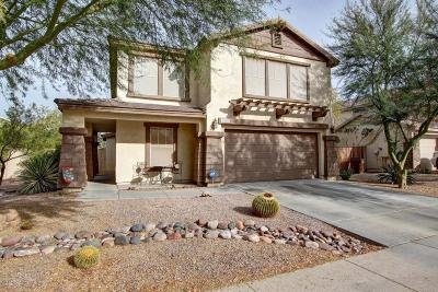 Apache Junction Single Family Home For Sale: 1846 E 39th Avenue