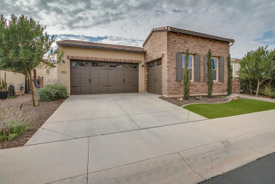 San Tan Valley Single Family Home For Sale: 1629 E Alegria Road