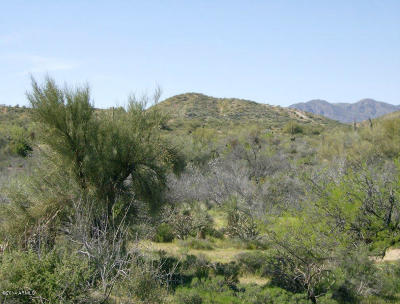 Scottsdale Residential Lots & Land For Sale: 136xx E Leisure Lane