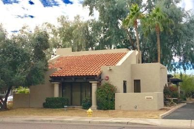 Scottsdale Commercial For Sale: 8715 E Via De Commercio