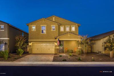 San Tan Valley Single Family Home For Sale: 210 E Monza Way