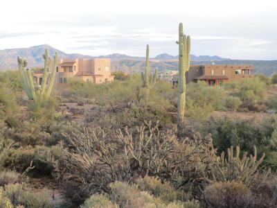 Scottsdale Residential Lots & Land For Sale: 34816 N 140th Street