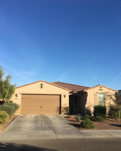 Goodyear Single Family Home For Sale: 4047 S 183rd Lane