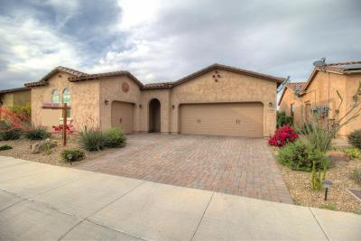 Goodyear Single Family Home For Sale: 17778 W Cottonwood Lane W