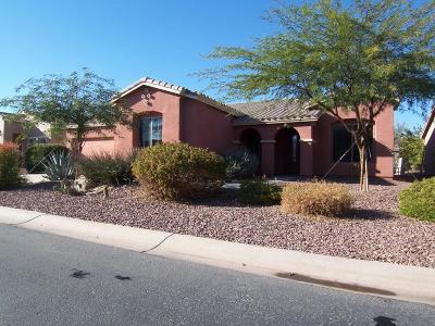Maricopa Single Family Home For Sale: 42604 W Sandpiper Drive