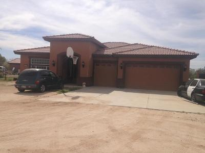 Casa Grande Single Family Home For Sale: 15819 W Mustang Lane