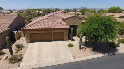 Single Family Home For Sale: 5102 E Desert Vista Trail