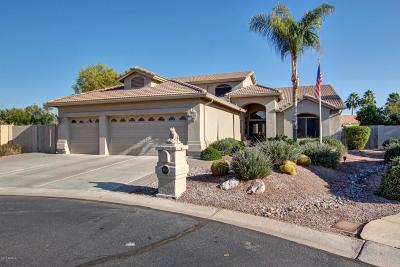 Sun Lakes Single Family Home For Sale: 8918 E Hercules Court