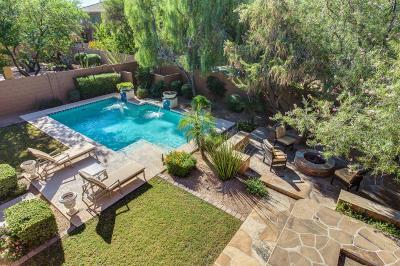 Phoenix Single Family Home For Sale: 3979 E Scout Pass