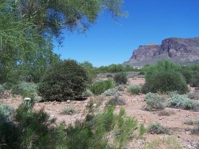 Apache Junction Residential Lots & Land For Sale: 5293 E 5th Avenue