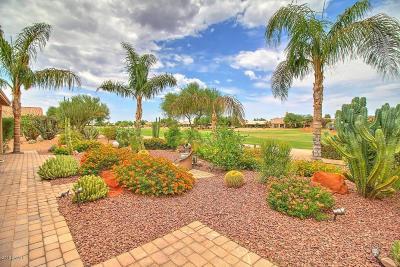 Sun Lakes Single Family Home For Sale: 24035 S Stoney Lake Drive