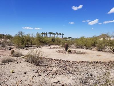 Peoria Residential Lots & Land For Sale: 9456 W Remuda Drive