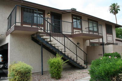 Scottsdale Condo/Townhouse For Sale: 1241 N Granite Reef Road