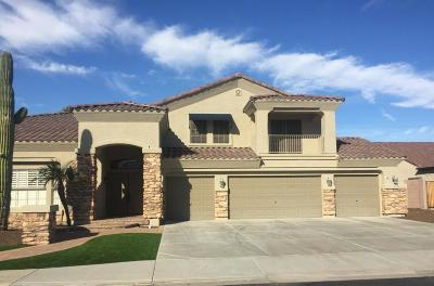 Peoria Single Family Home For Sale: 26762 N 97th Lane