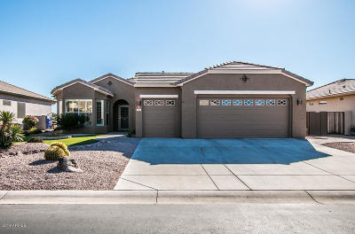 Chandler Single Family Home For Sale: 3461 E Firestone Drive