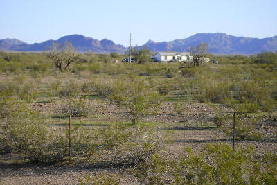 Tonopah Residential Lots & Land For Sale: 42700 W Bethany Home Road