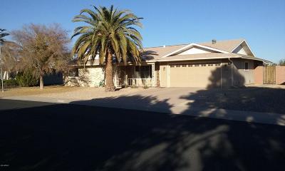 Sun City Single Family Home For Sale: 12419 N Vista Grande Court
